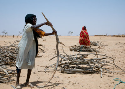 arfuri refugees working for local NGO Adesk gather dead wood to be weighed for distribution as cooking fuel for the Sudanese refugees.
