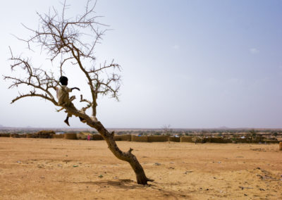 A boy sits in a tree in the middle of the Darfur refugee camp Iridimi.